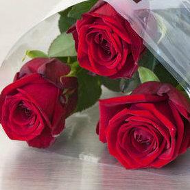 Bilde 3 røde roser