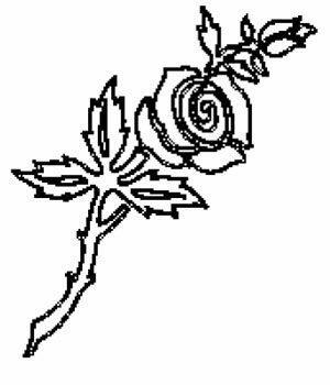 Bilde Ornament 12