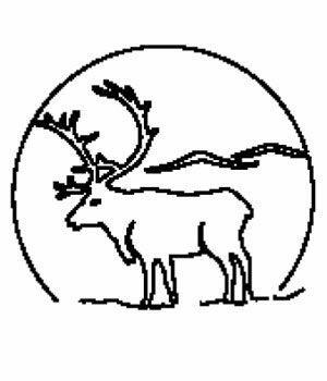 Bilde Ornament 13