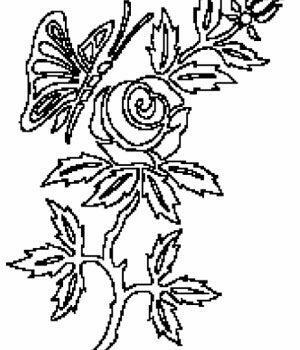 Bilde Ornament 16