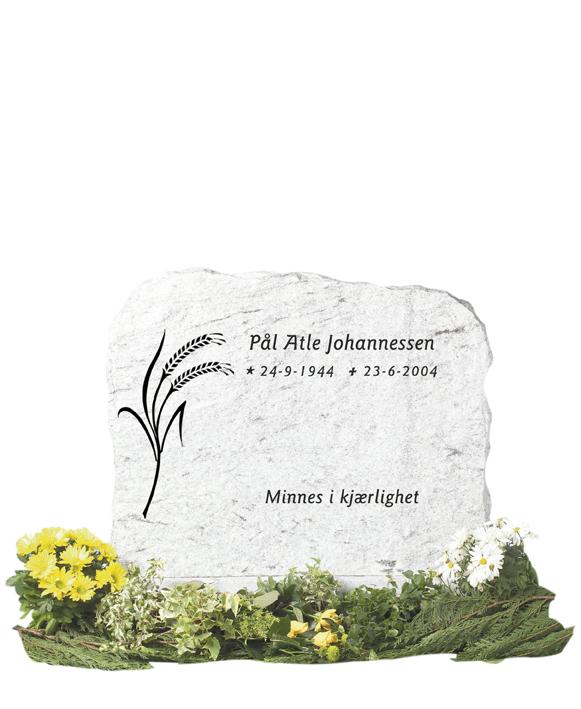 Bilde Komplett gravsten 203