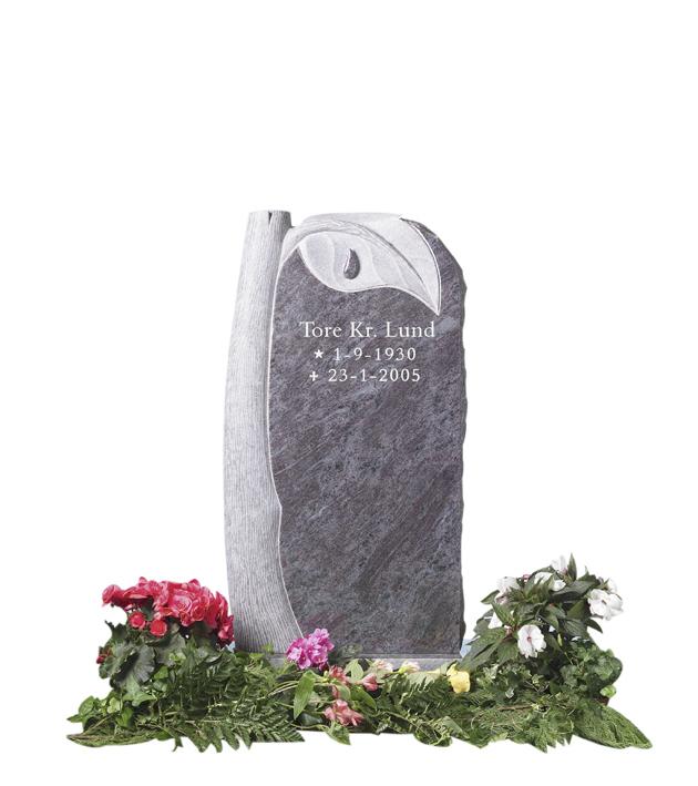 Bilde Komplett gravsten 227
