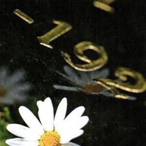 Bilde Fonus relieffbilde for polert overflate